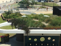 curved white roof with circle cut out of corner vegetated with plants overlooking beach, walkway and car park at Bondi Beach