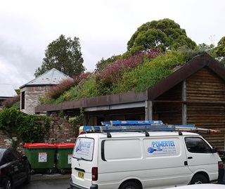 White van in foreground and a wooden shed behind it with pitched roof and garden growing on roof top.