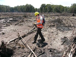 Person in yellow hard hat, orange vest with back-pack and holding clip board walking across cleared land.