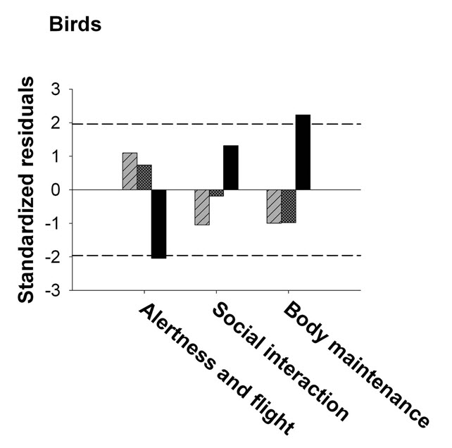 Chart showing bird behaviours in the night time study