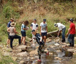 Citizen science macroinvertebrate project - collecting samples from a creek, Warrumbungles