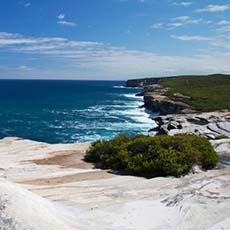The Coast track Royal National Park