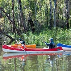 Canoeing on the Edward River in Murray Valley National Park