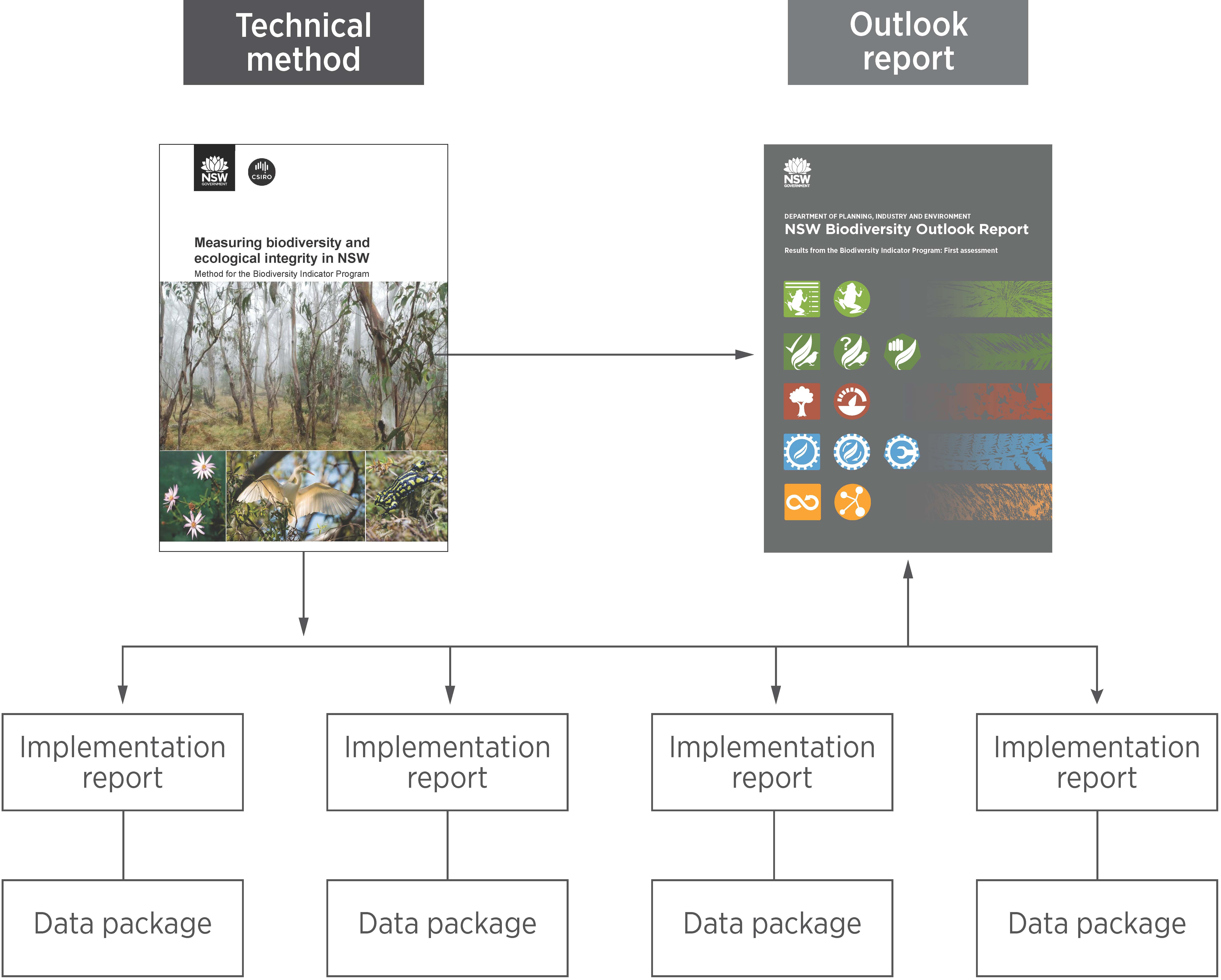 Tree diagram showing relationship between the Biodiversity Outlook Report, Method and implementation reports