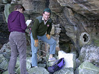 NPWS monitoring little penguins (Eudyptula minor) during breeding season
