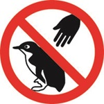 No touching little penguins sign