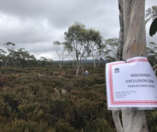 Machinery exclusion sign in Mongarlowe mallee (Eucalyptus recurva) community