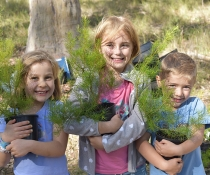 Three children holding potted North Rothbury persoonia (Persoonia pauciflora) plants