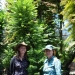 Heidi Zimmer and Cathy Offord, Wollemi pine specialists, on PlantBank visit