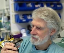 Southern Cross Wildlife Care was established by veterinary surgeon Dr Howard Ralph, and his wife Glenda, for the treatment and care of injured, sick and orphaned native Australian wildlife of all species