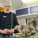 Dr Howard Ralph is qualified veterinary surgeon, as well as a doctor of human medicine and an anaesthetist, he wears many professional hats, but his true passion is treating native animals