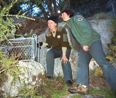 Saving our Species officer, Michaela Jones, and NPWS ranger Jules Bros checking on a trapped Brush-tailed Rock-wallaby in the Kanangra Area