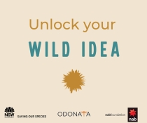 Wild Idea joint project logo