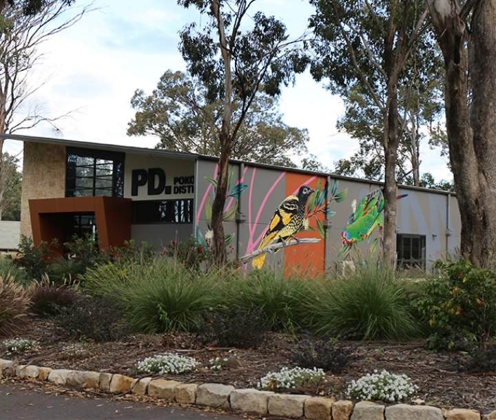 30-metre long mural featuring local threatened species on the wall of Pokolbin Distillery