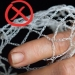 Inappropriate netting - mesh too large