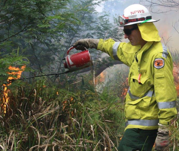 NPWS firefighter lighting bush for hazard reduction