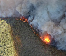 Aerial view forest fire front plumes of smoke Macleay