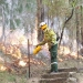 Staff from Metro South West and Blue Mountains regions undertaking the Pisgah Ridge hazard reduction burn