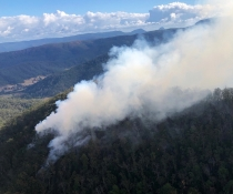 Border Ranges National Park, above Long Creek, hazard reduction burns