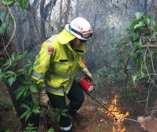 Controlled Burn by National Parks and Wildlife Service and NSW Rural Fire Service, fire and Rescue NSW. Andrew Smith.