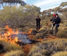 Fire and Cultural Science Team initiating a Cultural burn