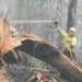 NPWS mopping up following fire Goolawah National Park