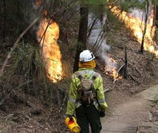 Staff from Metro South West and Blue Mountains regions undertaking the Pisgah Ridge hazard reduction burn near Glenbrook in the Blue Mountains National Park