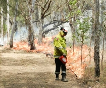 Fire personnel conducting hazard reduction burn