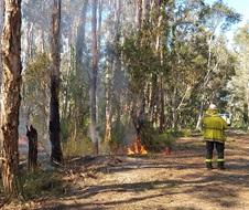 Hazard reduction burn, Jervis Bay National Park