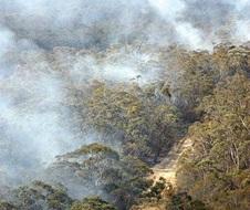 Hazard reduction burn, Morton National Park