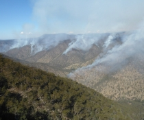 Hazard reduction burn, Northern Tablelands, August 2016