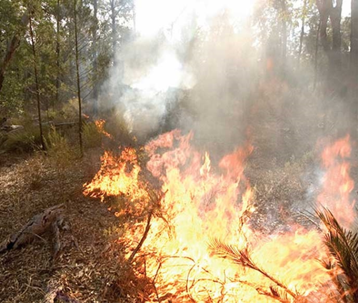 Hazard reduction burn along Top Crossing Road