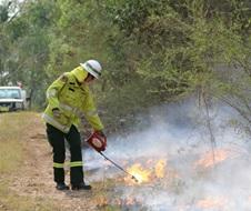 Trainee field officer, hazard reduction burn