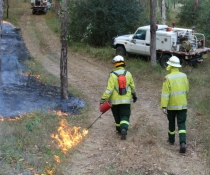 Trainee field officers, hazard reduction burn