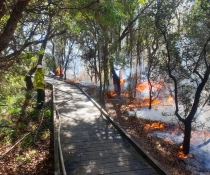 Hazard reduction burn for Kamay Botany Bay National Park