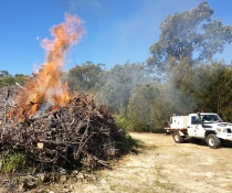 Ku-ring-gai Chase National Park hazard reduction burn