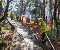 NPWS hazard reduction burn in Royal National Park