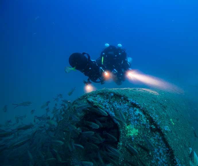 Really. japanese midget submarines in sydney harbour