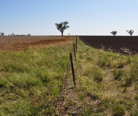 New land management and conservation laws start