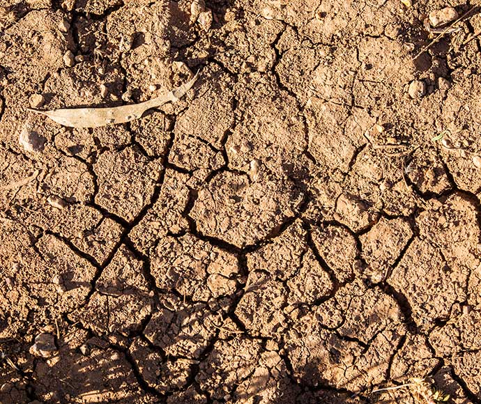 Soil degradation | NSW Environment, Energy and Science