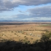 Liverpool Plains south of Gunnedah, NSW