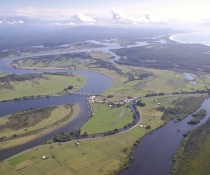 Aerial photograph of Macleay River with mangroves and saltmarshes