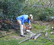 Man using a chainsaw for branch clearing in urban backyard