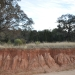 Sodic Red Chromosol on colluvial footslopes below steep Narrabeen Sandstones south of Merriwa in the Hunter catchment.