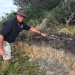 Soil Knowledge Network: a midden in a black headland soil, Ben Boyd National Park