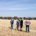 Soil Knowledge Network: Inspecting soil surface condition, Cowra