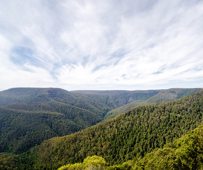 Valley view, Barrington Tops National Park