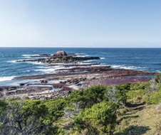 Rocky landscape and ocean around Cityrock in Ben Boyd National Park