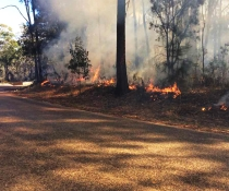 Jigamy hazard reduction burn underway in Ben Boyd National Park