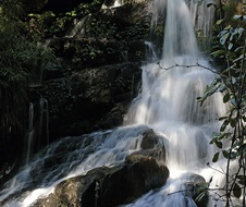 Bangalore Falls walking track, Bindarri National Park